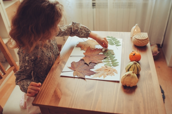 preparations for autumn craft with kids at home.